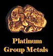 Assay Platinum